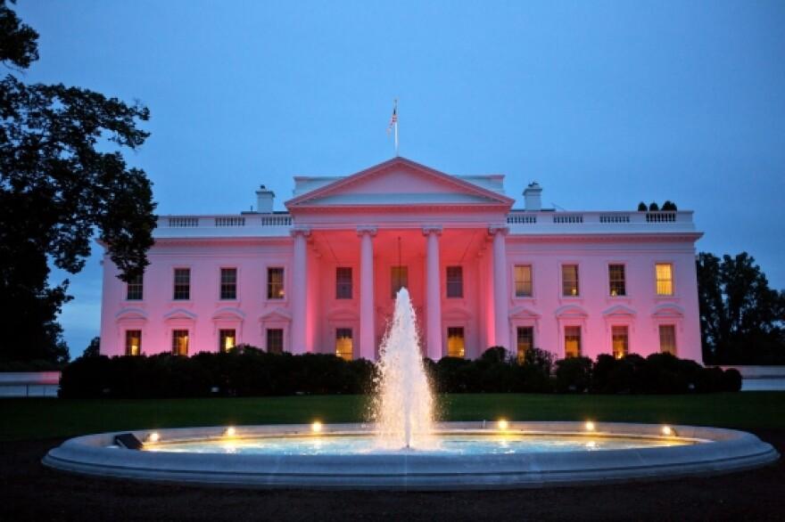 white_house_pink.jpg