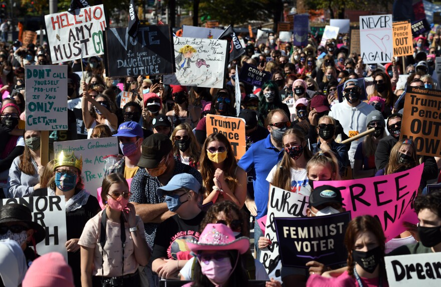 Protesters rally in Washington, D.C., during the latest Women's March.