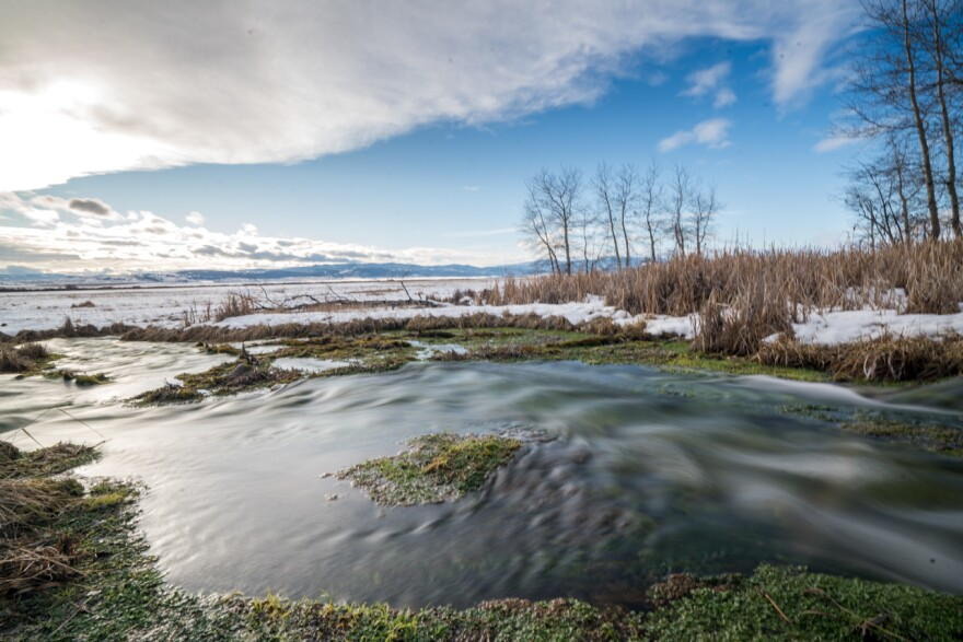 Nevada Spring Creek was once cut off to irrigate a ranch in the Blackfoot Valley. Now, through a restoration effort involving a wetland mitigation bank, its natural connectivity has been restored.