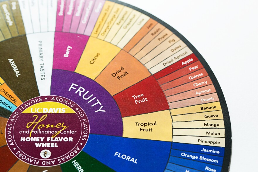 Flavor wheels stem from lexicons, the carefully, often scientifically selected words used to describe a product, be it food, wine, carpet cleaner or dog food.