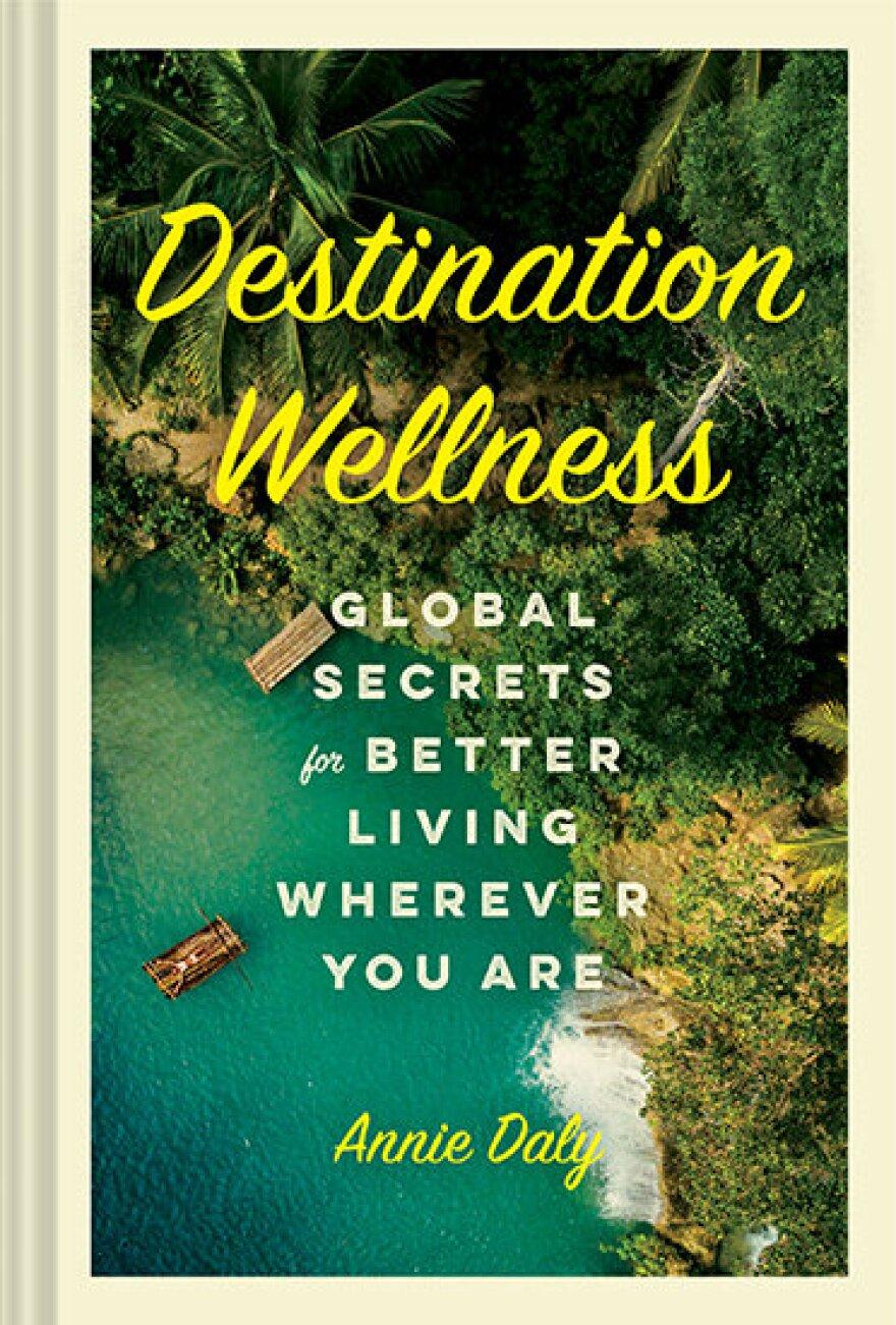 Destination+Wellness_RESIZED+COVER.jpg