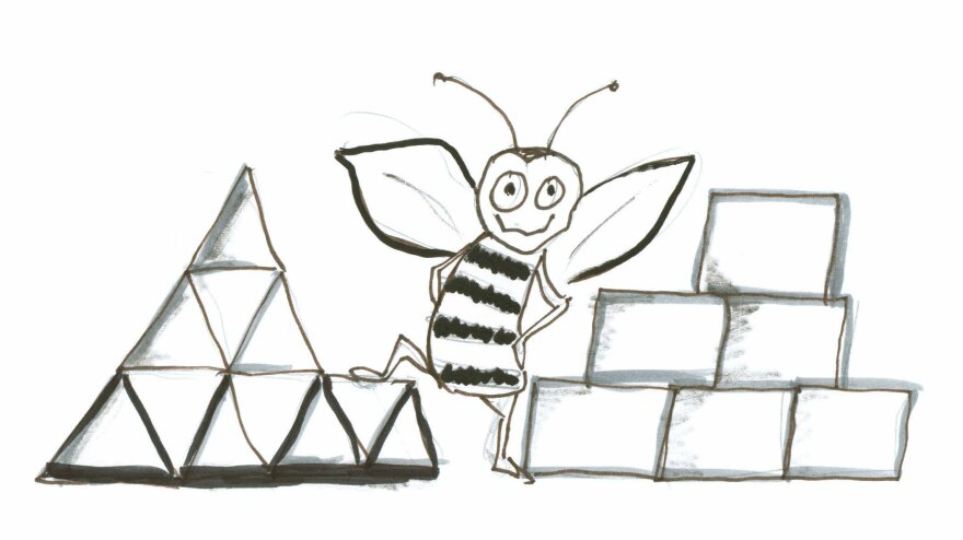 Bee with triangles and squares