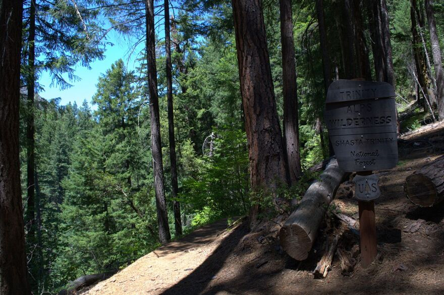 Trinity_Alps_Wilderness_-_Canyon_Creek_Trail.jpg