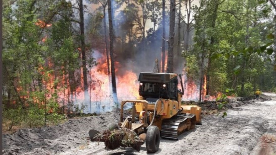 bulldozer figthing forest fire
