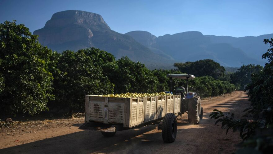 A tractor rides through a farm last year in Hoedspruit, South Africa. It is just one of many plots of land across the country that have been the subject of disputes.