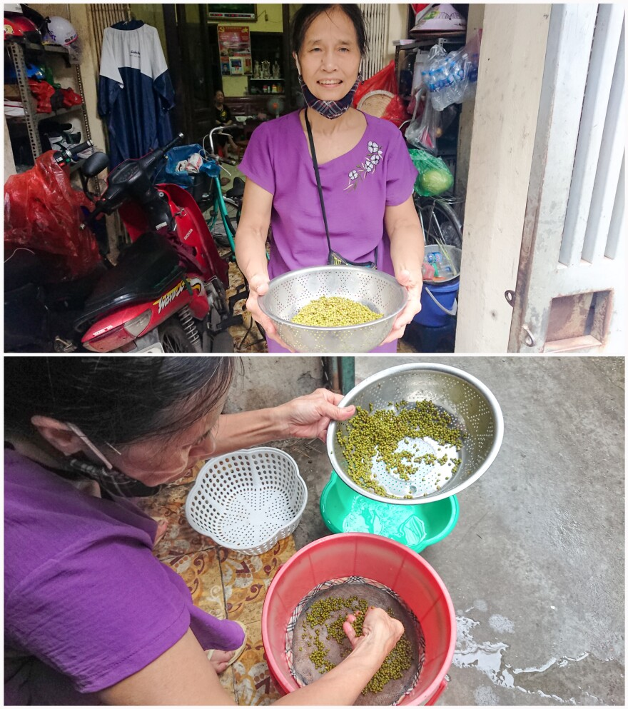 Ms. Hồi, a club member, learned how to grow bean sprouts in a bucket from the Intergenerational Self Help Club. Now she sells it to the local community to make a little extra income.