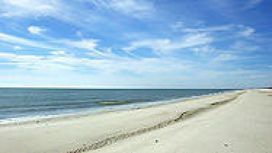 """St. George Island State Park would be included in a survey of state land uses that could include """"low-impact"""" agriculture under a Senate proposal."""