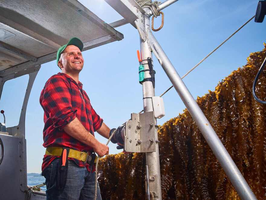 Bren Smith is a seaweed farmer and co-founder of GreenWave, a nonprofit that supports and trains ocean farmers.