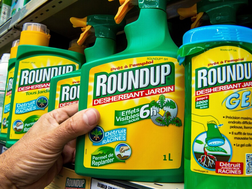 "A bottle of Monsanto's Roundup herbicide in a gardening store in Lille, France. A group convened by the European Food Safety Agency reviewed the available scientific data on the chemical, also known as glyphosate, and <a href=""http://www.efsa.europa.eu/en/press/news/151112"">concluded</a> that it probably does not cause cancer."