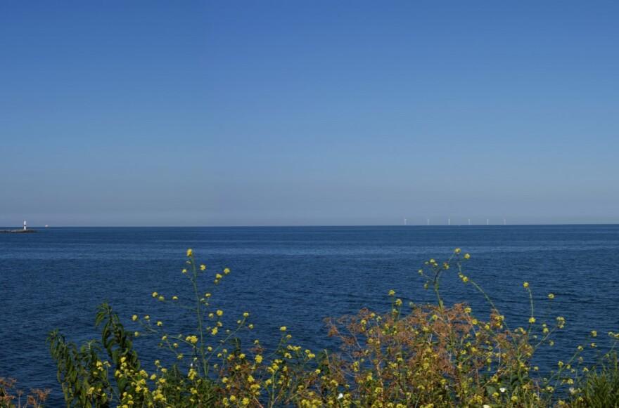 Lake Erie wind farm simulation