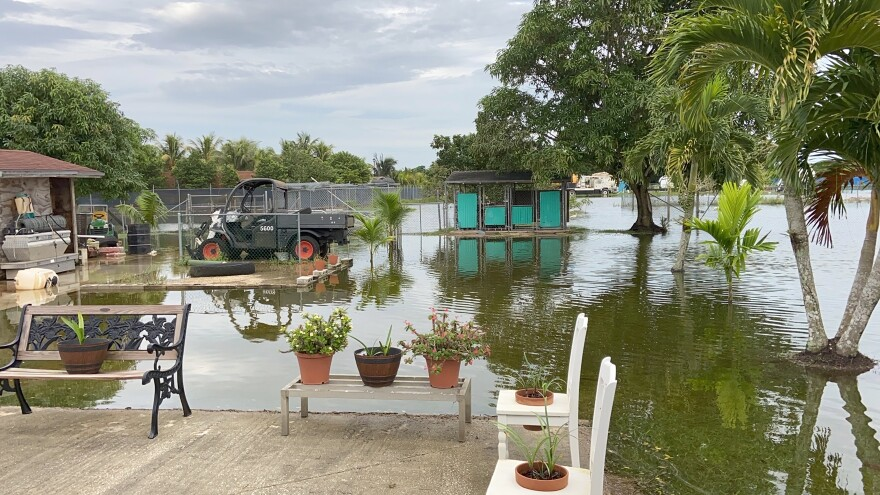 Flooding left most of Raul Arrazaeta's Las Palmas yard underwater last month.