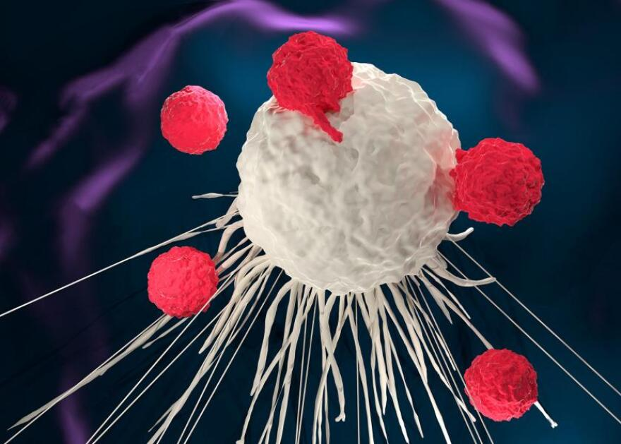 car-t-cell-for-web.jpg