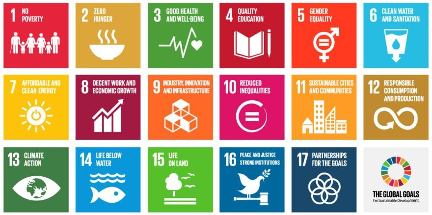 U.N. Development Goals