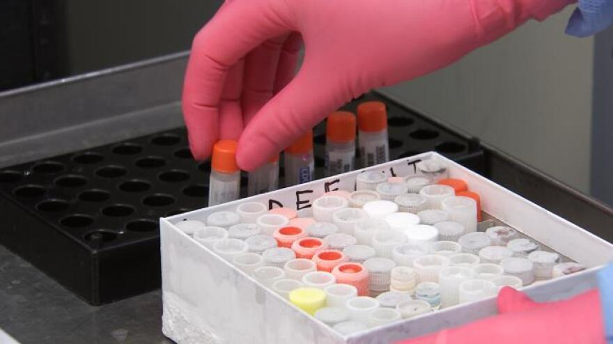 A scientist unpacks influenza samples sent to the CDC for testing in 2017.