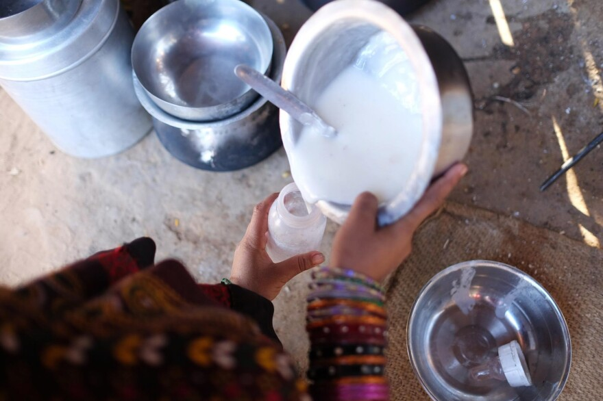 A Maldhari woman prepares a baby bottle of warm camel milk for her one year-old. Children in this community grow up drinking camel milk from a very young age.