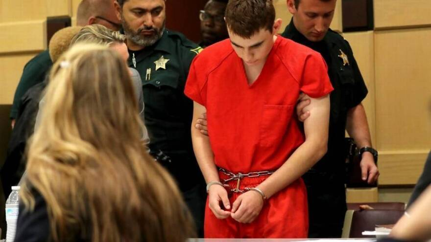 Nikolas Cruz appears in open court for the first time on Monday, Feb. 19, 2018, during a status hearing before Broward Circuit Judge Elizabeth Scherer.
