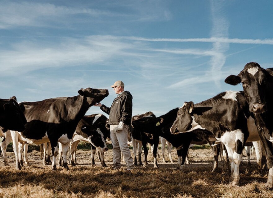 Michael Turley is the fourth generation to operate his family's dairy farm.