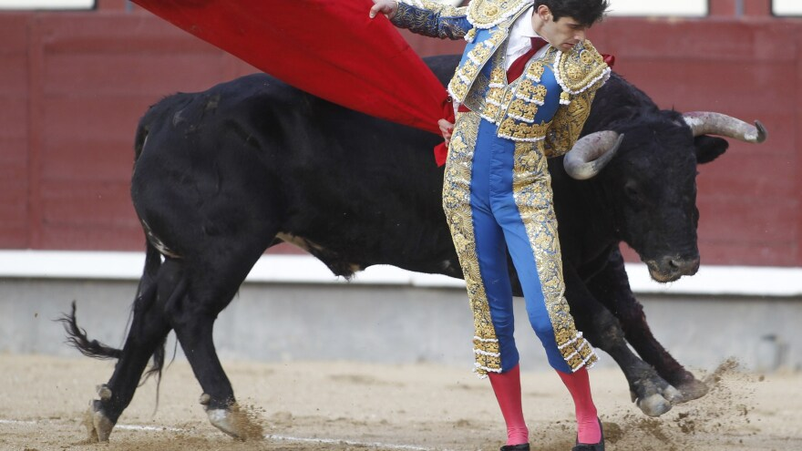 Spanish matador Alberto Lopez Simon makes a pass on a bull at the Plaza de Toros de Las Ventas bullring in Madrid. The restaurant Casa Toribio, located just down the street, keeps the meat from from bulls killed in bullfighting on its menu all year long.