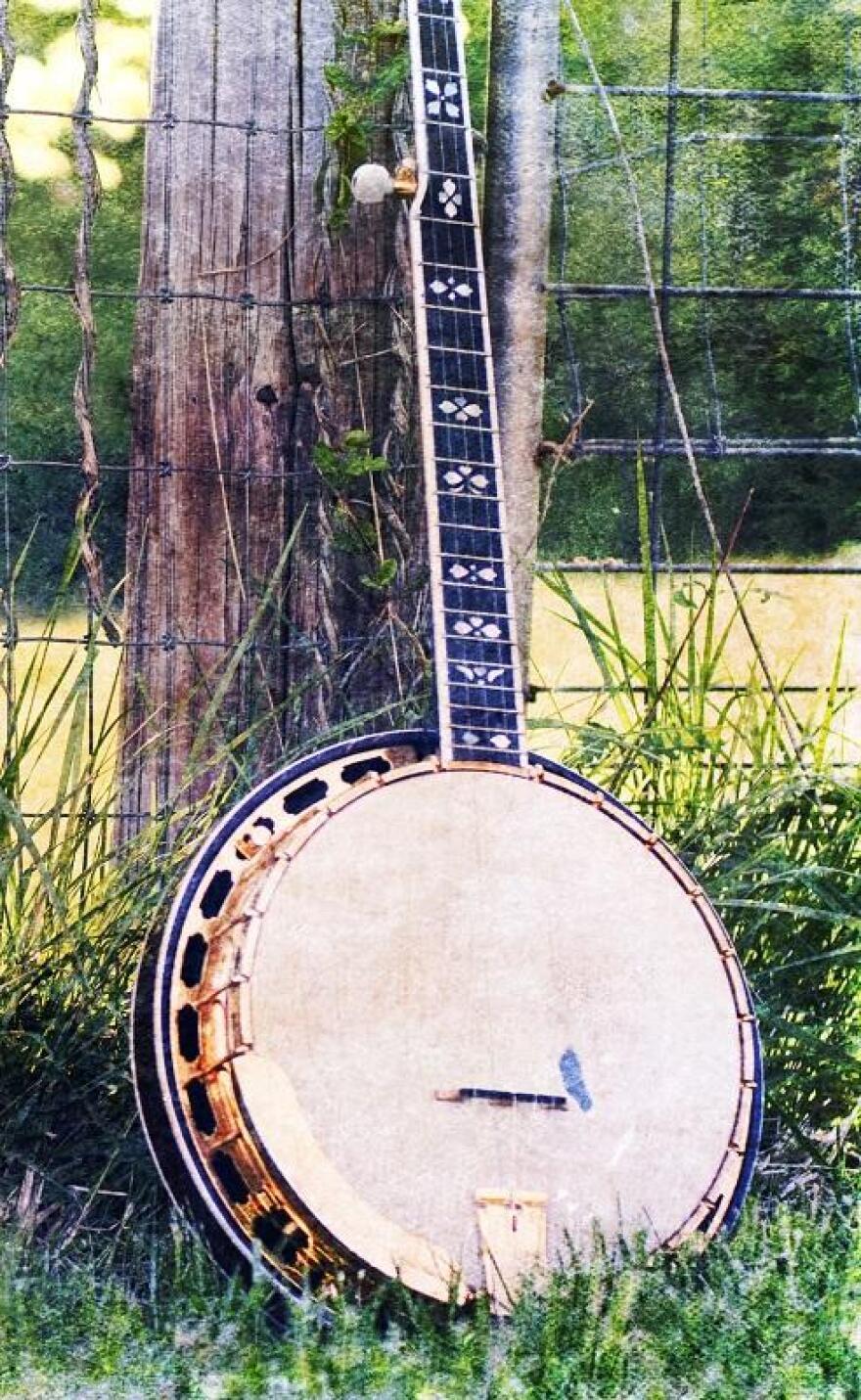 banjo-in-a-field-2.jpg