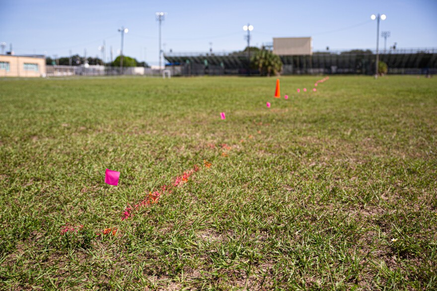 Pink flags and spray paint mark the acre and a half plot of land on the grounds of King High School, where there is believed to be a lost cemetery from the 1940s and 1950s.