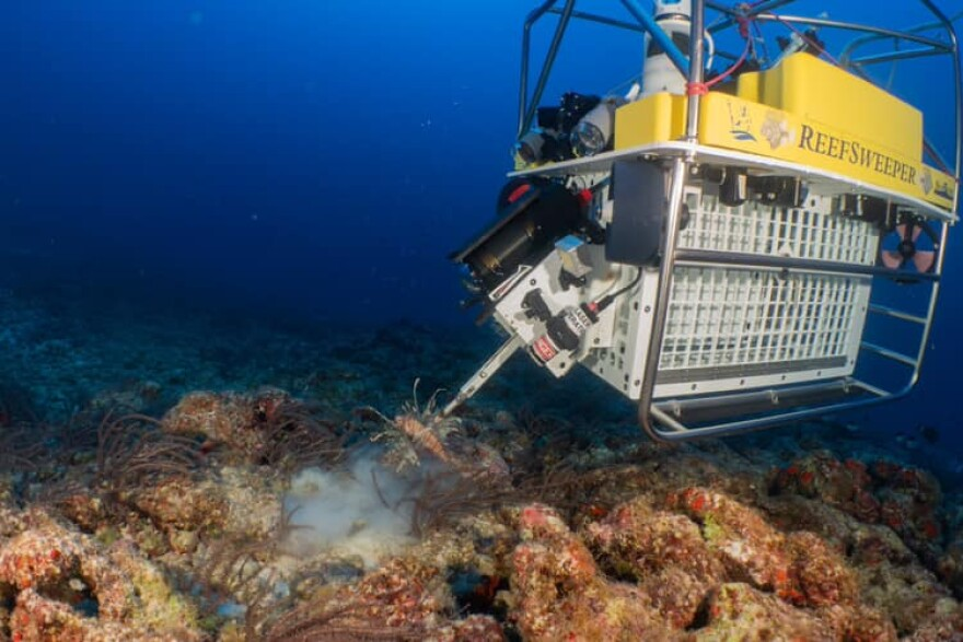 The Reef Sweeper is about the size of a refrigerator. It spears lionfish, then retrieves them and sells them as food.