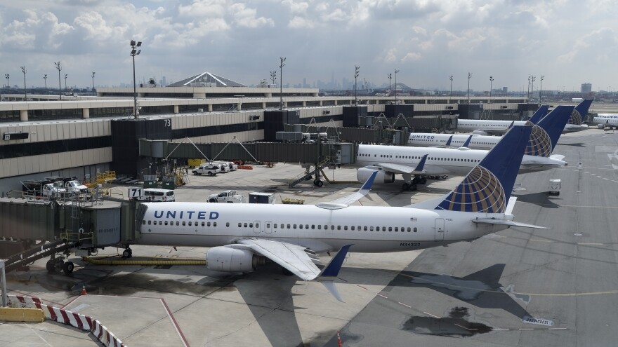 United Airlines planes are parked at gates at Newark Liberty International Airport in Newark, N.J. Company executives call the COVID-19 pandemic the worst crisis in the airline's history.