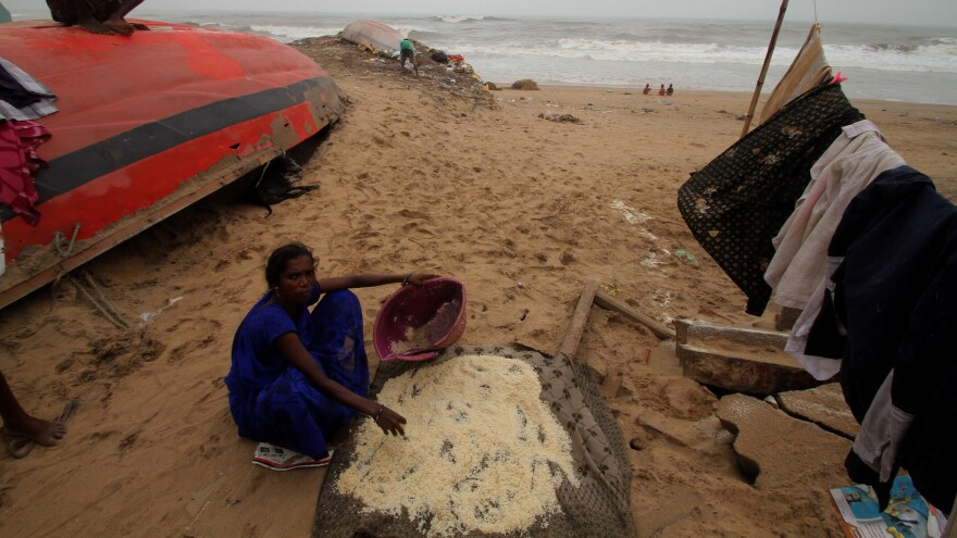 Cyclone Fani forced the evacuation of millions of people in South Asia, including in India's Odisha state. The storm left hundreds of homes destroyed.