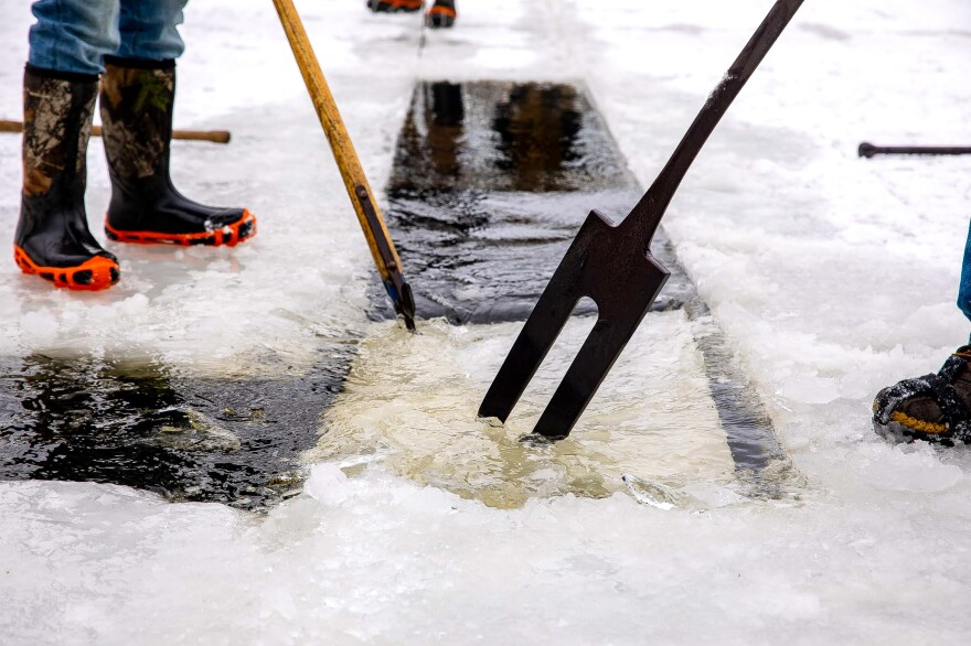 Pushing the ice along the open channel using an old fashioned pick pole.