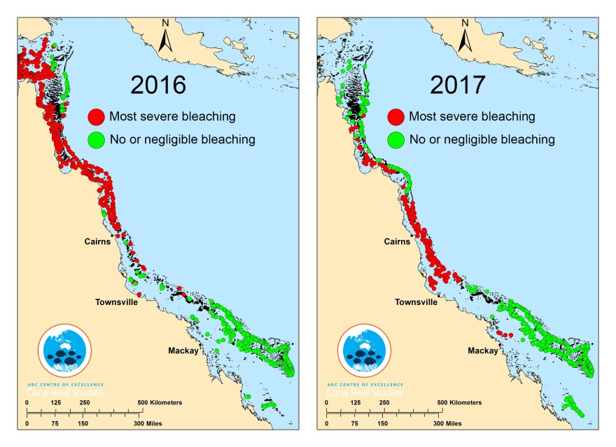 This composite map shows surveyed coral reefs in 2016 (left) and 2017.