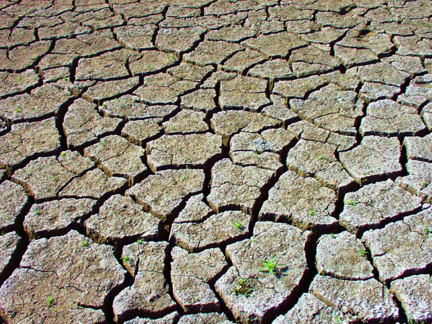 Dry lakebed