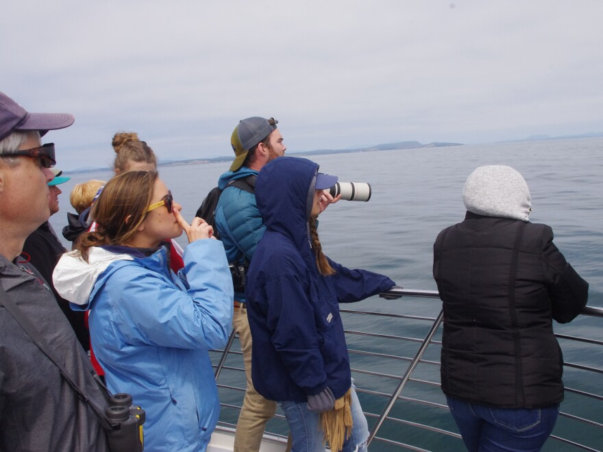 Tourists scanning the horizon on a whale watching cruise in Washington state's San Juan Islands.