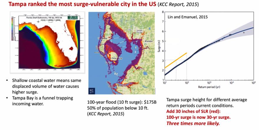 tampa_flood_map.png