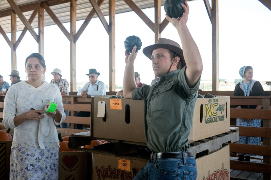 Gourds, squash and pumpkins galore are for sale at the Shenandoah Valley Auction in rural Virginia.