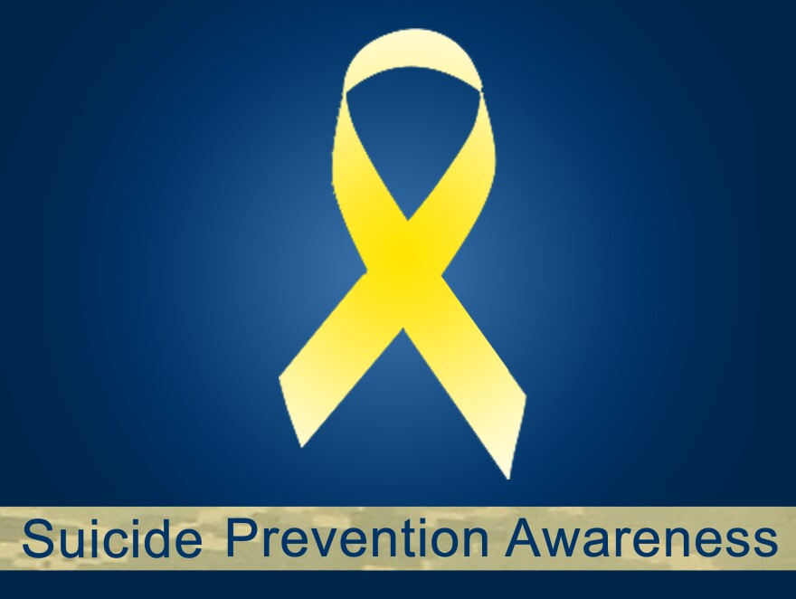 Suicide is the 10th-leading cause of death in the United States, and Veteran suicide is a national concern