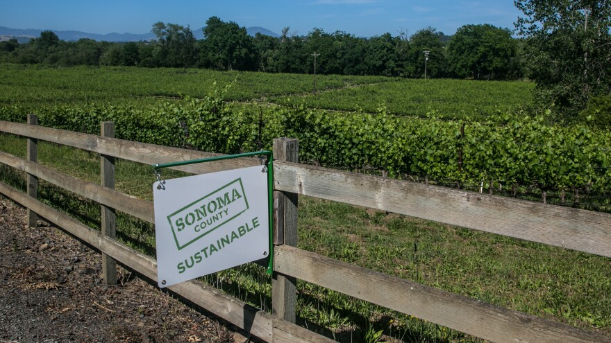 """A """"Sonoma Sustainable"""" sign hangs along a road in the Russian River Valley near Healdsburg, Calif."""