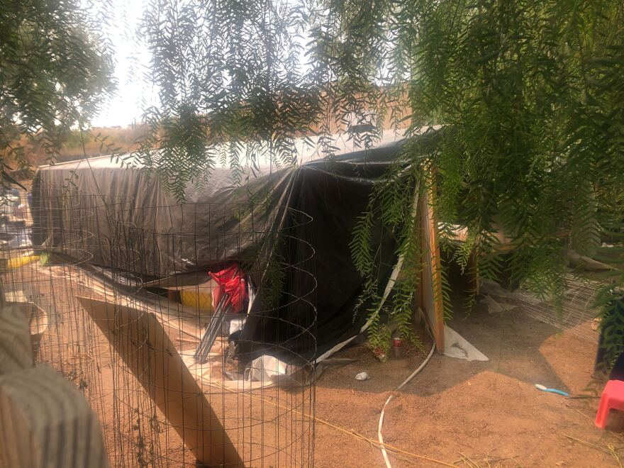 What appears to be a makeshift greenhouse is seen behind a home where killings occurred in Aguanga, Calif. Several people were found fatally shot at the illegal marijuana growing operation.