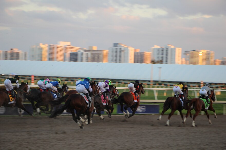 Horses running in a race in front of Miami skyline