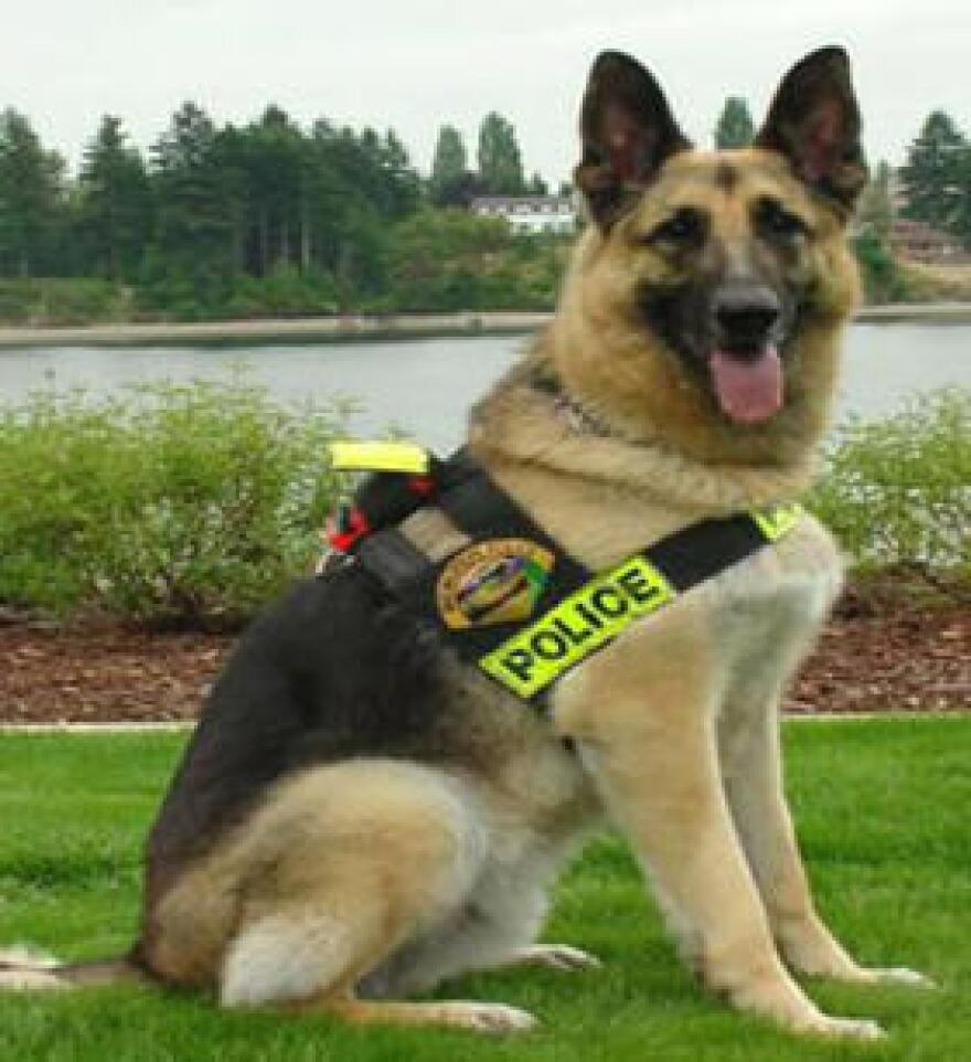 Sen. Joseph Abruzzo wants to set up a retirement plan for police dogs.