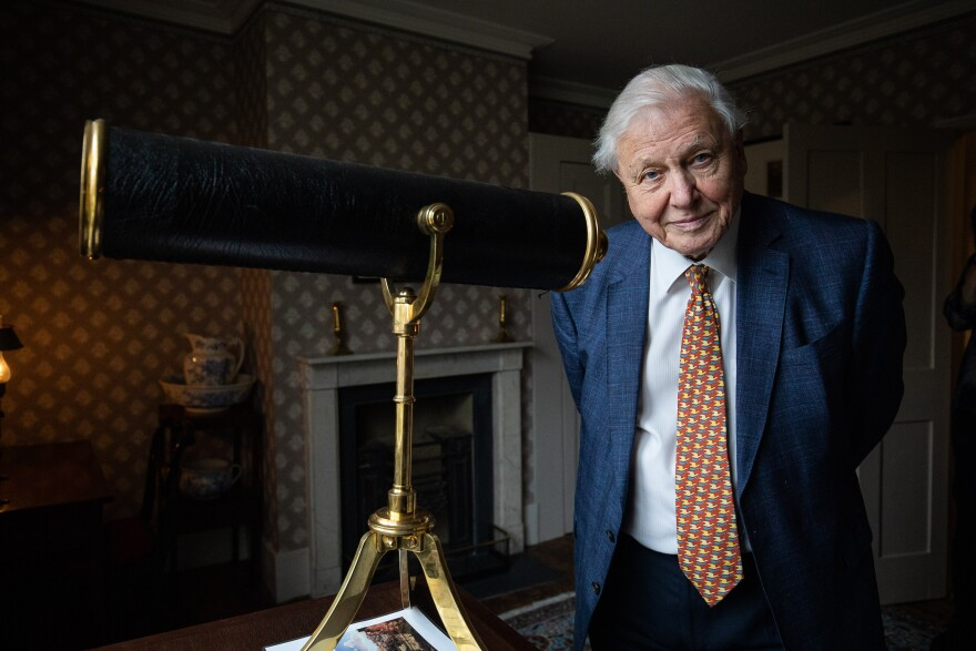 Sir David Attenborough opens the Turner and the Thames, Five paintings at the artists house in Twickenham on January 10, 2020 in London, England. (Tim P. Whitby/Getty Images)