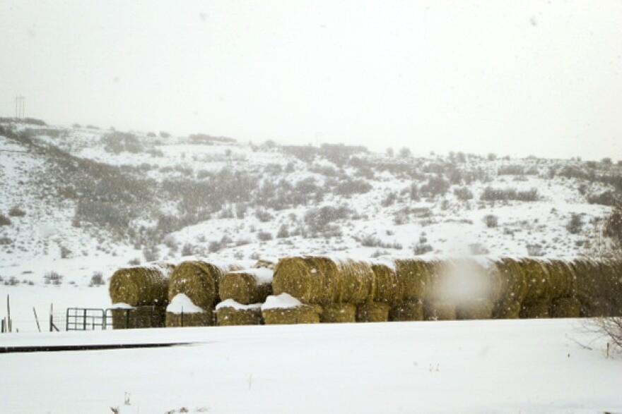 Rural Colorado, where math standards meet hay bales.