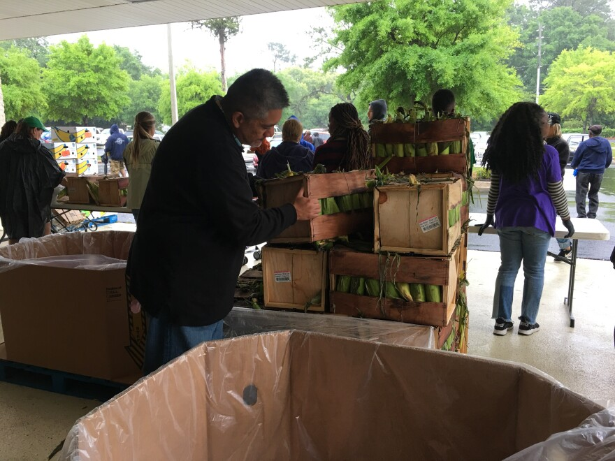 Food bank CEO Frank Castillo inspects bushels of fresh corn on the cob being given away Saturday.