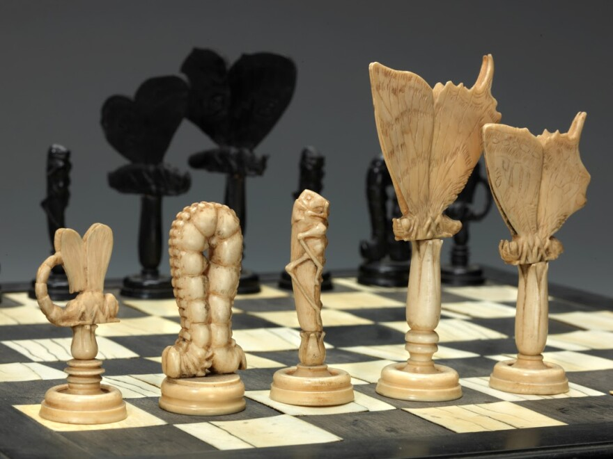 An insect chess set