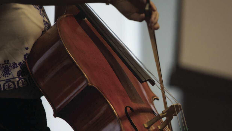 Cello Photo.jpg