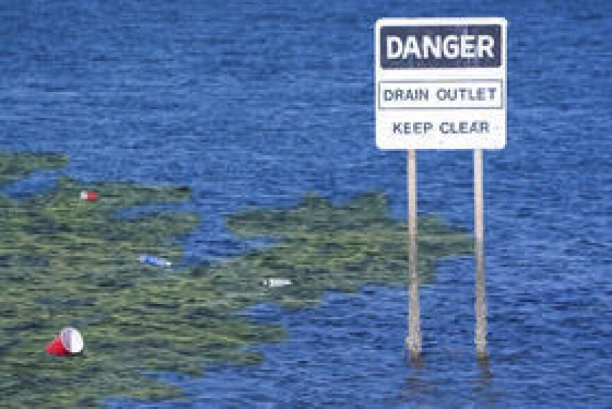 The Florida Clean Water Network is dropping a federal challenge to Florida's new water quality standards after the U.S. Environmental Protection Agency refused a formal request to order a rewrite.
