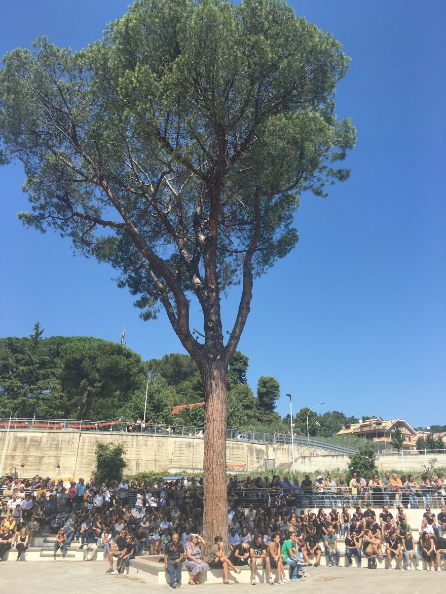 Mourners gather under an olive tree during the state funeral in Ascoli Piceno.