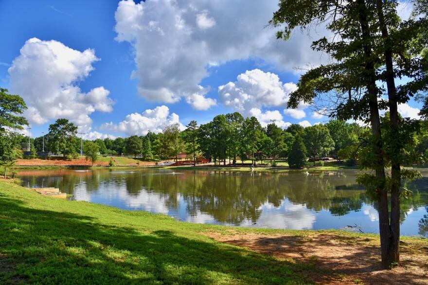 Pond at Park Road Park where tests found toxic algae-like organism.