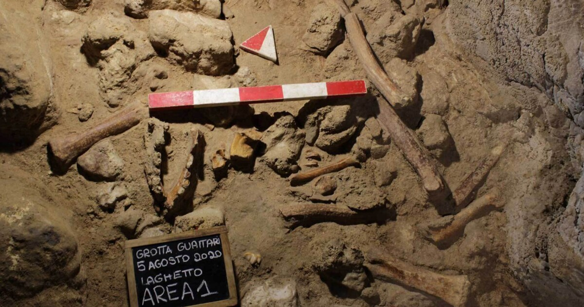 'An Extraordinary Discovery': Archeologists Find Neanderthal Remains In Cave Near Rome