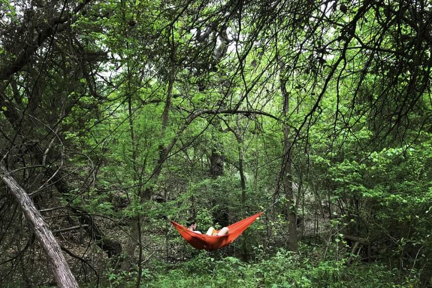 A man reads a book in a hammock in Blunn Creek Nature Preserve in South Austin on March 29.