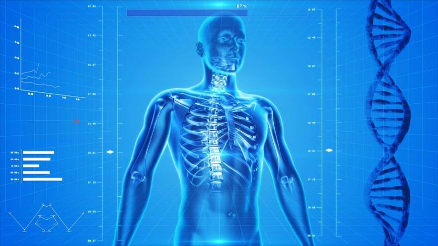 human-skeleton-CGI.jpg