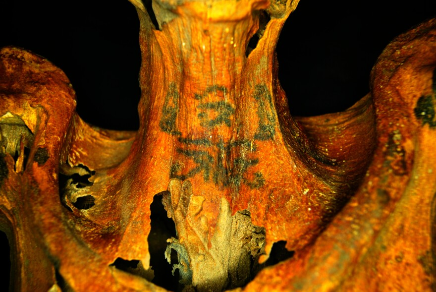 An infrared photograph of an ancient Egyptian female mummy with tattoos on her neck.